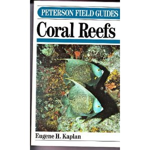 Coral Reefs of the Caribbean and Florida Keys